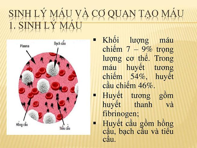 cong-thuc-mau