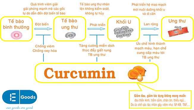 tác dụng của curcumin