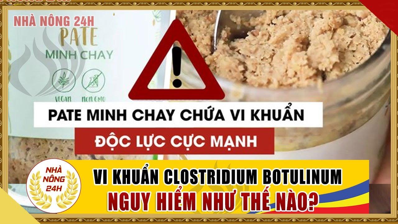 Chất độc trong Pate Minh Chay là loại gì? Nguy hiểm thế nào đến sức khỏe?