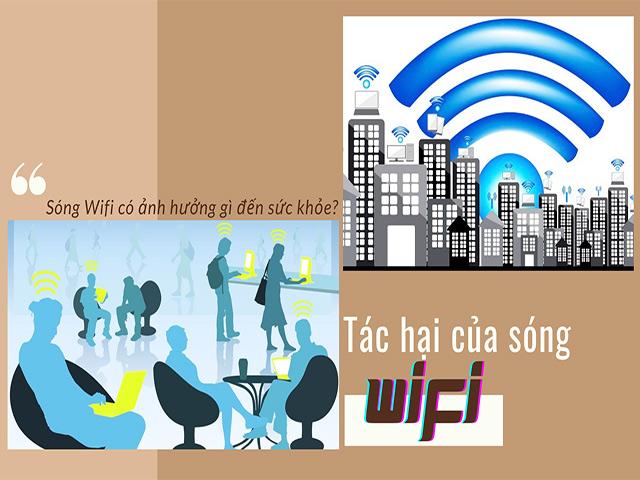 Tác hại khủng khiếp của sóng wifi mà bạn không hề hay biết