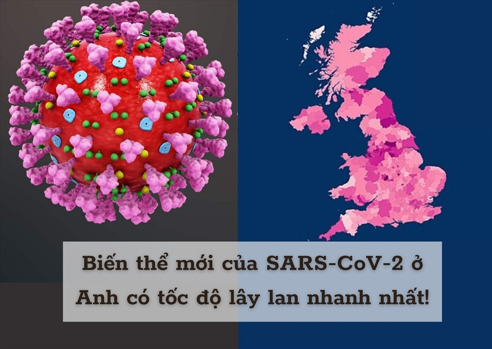 Biến thể mới của virus Sars – Cov - 2 tại Anh nguy hiểm như thế nào? Tại sao biến chủng này có tốc độ lây lan nhanh hơn chủng cũ?