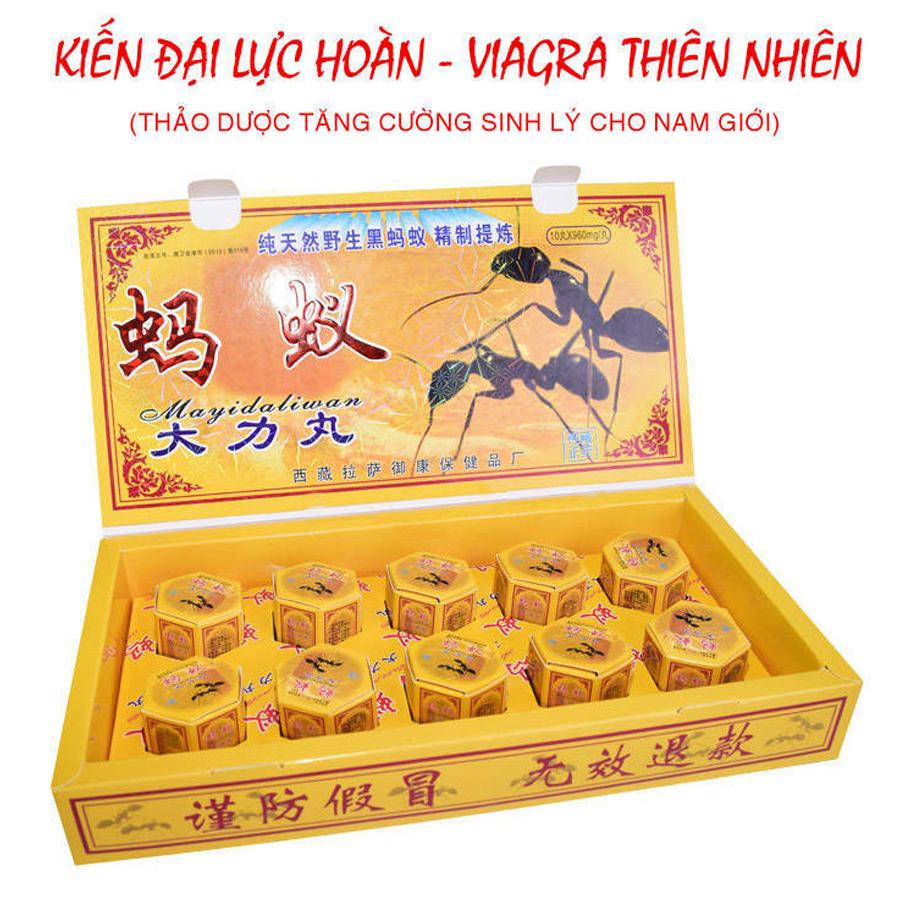 Thuốc tăng cường sinh lý Con Kiến (Kiến Càng đen) Tây Tạng